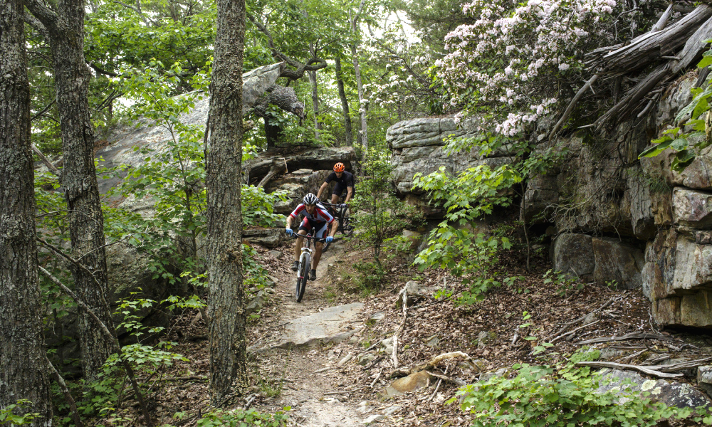 Chattanooga mountain biking