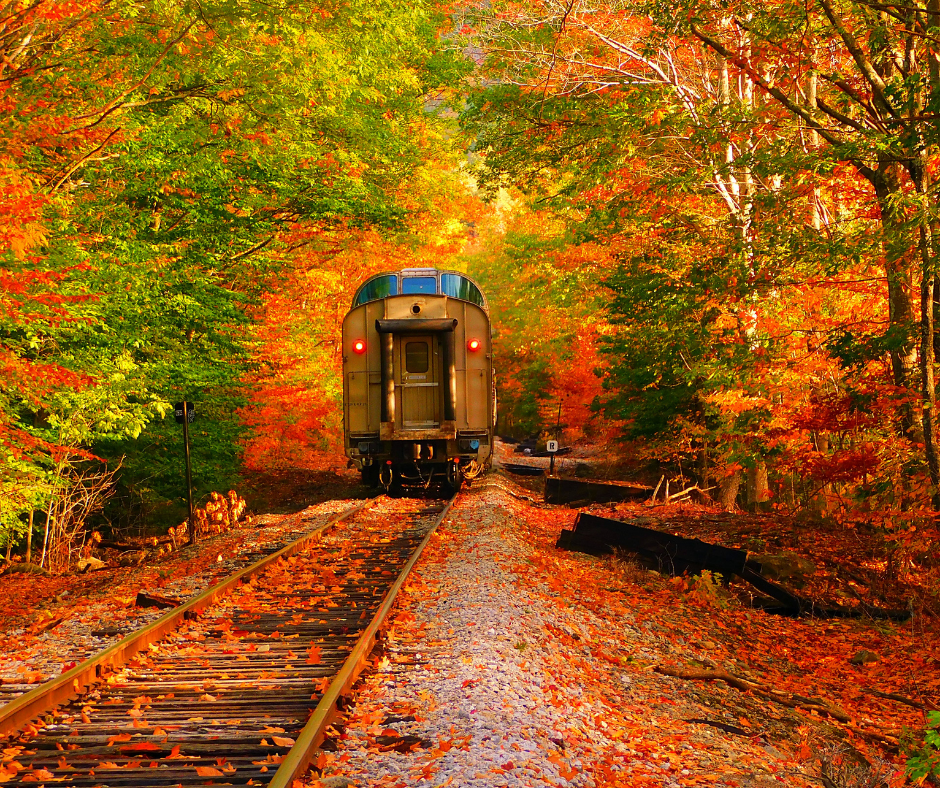 Chattanooga train ride in the fall